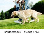Stock photo cropped shot of family walking with dog on green lawn at park 692054761