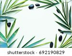 palm leaf and pebble on blank... | Shutterstock . vector #692190829