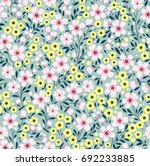simple cute pattern in small... | Shutterstock .eps vector #692233885