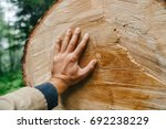 the hand of man touches the... | Shutterstock . vector #692238229