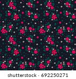 cute floral pattern in the... | Shutterstock .eps vector #692250271