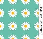 seamless pattern. white daisy... | Shutterstock .eps vector #692306377