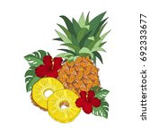 pineapple on white background | Shutterstock .eps vector #692333677