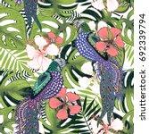tropical flower pattern. vector ... | Shutterstock .eps vector #692339794