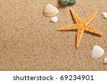 Shells and starfish - stock photo
