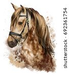 Stock photo horse head watercolor drawing 692361754