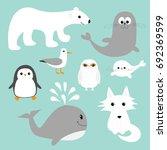 arctic polar animal set. white... | Shutterstock .eps vector #692369599