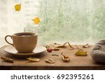 cup of autumn tea  coffee ... | Shutterstock . vector #692395261