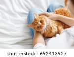 Cute Ginger Cat Lies On Woman'...