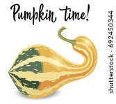 oblong striped pumpkin isolated ... | Shutterstock .eps vector #692450344