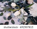 white tulips | Shutterstock . vector #692507815