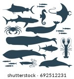 fish silhouette. isolated fish... | Shutterstock .eps vector #692512231