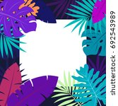 colorful palm leaves  hawaiian... | Shutterstock .eps vector #692543989
