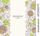 background with brazilian nut.... | Shutterstock .eps vector #692560375