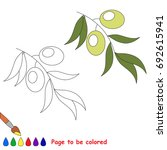 olive green to be colored  the... | Shutterstock .eps vector #692615941