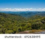 Forest Landscape At Monte Verd...