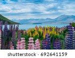 landscape at lake tekapo and... | Shutterstock . vector #692641159