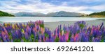 landscape at lake tekapo and... | Shutterstock . vector #692641201