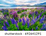 landscape at lake tekapo and... | Shutterstock . vector #692641291