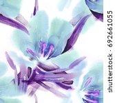 floral seamless pattern.... | Shutterstock . vector #692661055
