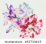 blooming flowers series 2  the... | Shutterstock . vector #692710615