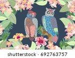 evening garden and owls.... | Shutterstock .eps vector #692763757