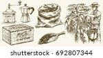 farmer picking coffee beans.... | Shutterstock .eps vector #692807344