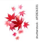 realistic autumn maple leaves... | Shutterstock .eps vector #692826331