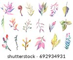 watercolor floral collection.... | Shutterstock . vector #692934931