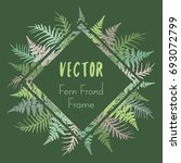 fern frond rhombus frame vector ... | Shutterstock .eps vector #693072799