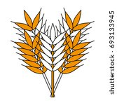 wheat vector illustration | Shutterstock .eps vector #693133945