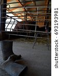 Small photo of work boots in front stables with calves agnus