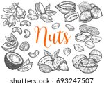 hazelnut  almond  walnut ... | Shutterstock .eps vector #693247507