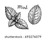 ink sketch of mint leaves.... | Shutterstock .eps vector #693276079