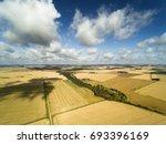 ripe grain fields in latvian...