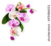 floral frame. composition of... | Shutterstock . vector #693486031