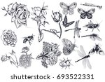 collection of vector hand drawn ... | Shutterstock .eps vector #693522331