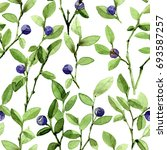 watercolor twigs of blueberries.... | Shutterstock . vector #693587257