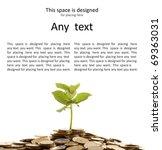 Money Conceptual Shoot