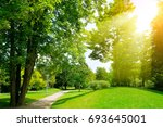 bright sunny day in park. the... | Shutterstock . vector #693645001