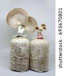 Mushroom Being Grow Up In Bag...