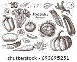 set vegetables. vector hand... | Shutterstock .eps vector #693695251