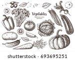 set vegetables. vector hand... | Shutterstock .eps vector #693695251