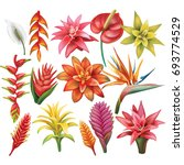 set of tropical flowers | Shutterstock .eps vector #693774529