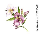 Composition With Alstroemeria....