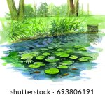 Water Lily Pond.watercolor...