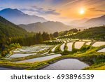 rice terraces at sunset in... | Shutterstock . vector #693896539