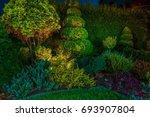 backyard garden led lighting... | Shutterstock . vector #693907804