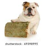 English Bulldog With Paw Up On...