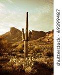 Wild West Desert Trail To...